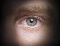 Zieleni oczy Zdjęcie Stock