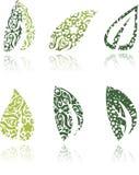 Zieleni ornamentacyjni liście Royalty Ilustracja