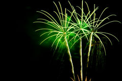 Zieleni palmowi fajerwerki na czarnym nieba tle Fotografia Stock