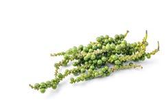 zieleni peppercorns Zdjęcie Stock