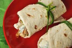 zieleni pieluchy talerza czerwieni shawarmas Obrazy Stock