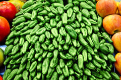 zieleni pieprze Obraz Stock