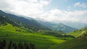 Zieleni pola z jedlinowymi drzewami, śnieżnymi górami i ampuł chmurami, Niebieskie niebo komes z chmur obrazy royalty free