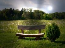 Zieleni poly lata słońca natura zasadza lasowego Germany Zdjęcie Royalty Free