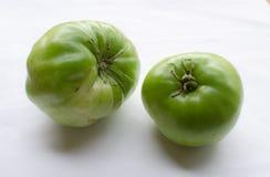 Zieleni pomidory na białym tle Fotografia Stock