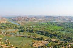 Zieleni ryżowi pola, palmy i rzeczny Tungabhadra w wiosce Hampi, Drzewka palmowe słońce, ryż pola Tropikalny egzot obrazy stock
