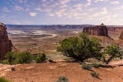 Zieleni rzeczni meandery wokoło mesas i buttes w Canyonlands parku narodowym fotografia stock