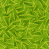 zieleni tło liść Zdjęcie Royalty Free