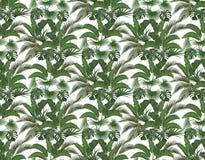 Zieleni tropikalni liście banan, koks, monstera i ogawa w pastelowych kolorach, ilustraci bezszwowy linowy royalty ilustracja