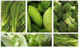 zieleni warzywa Obraz Stock