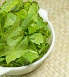 zieleni warzywa zdjęcia royalty free