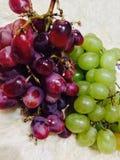 Zieleni winogrona i czerwoni winogrona Obraz Royalty Free