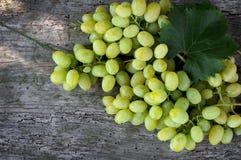Zieleni winogrona na drewnianym tle Fotografia Stock