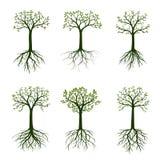 Zieleni wiosen drzewa z liśćmi również zwrócić corel ilustracji wektora ilustracji