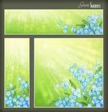 Zieleni sztandary ustawiający z kwiatami i zamazującymi sunrays Obraz Stock
