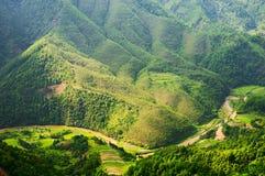 zieleni wzgórza Fotografia Stock