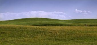 Zieleni wzgórza Zdjęcia Stock