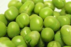 zieleni zbliżenie grochy Obraz Stock