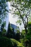 Zielenisty drzew i krzaków outside izolował budynek w pogodnym Zdjęcie Stock