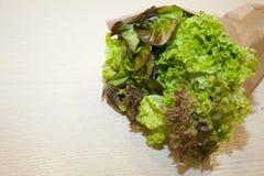 zieloną sałatkę Obraz Stock