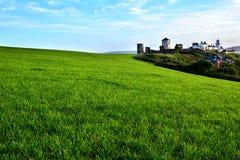 zielona łąka Zdjęcia Royalty Free