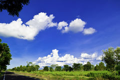 Zielona łąka, białe chmury, niebieskie niebo Zdjęcie Royalty Free