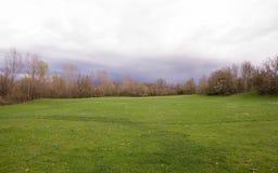 Zielona łąka Otaczająca drzewami i krzakami obrazy stock
