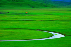 Zielona łąka z wijącą zatoczką Zdjęcia Royalty Free