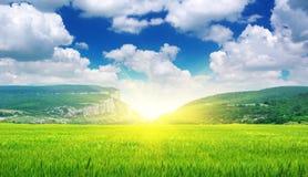 zielona łąkowa góra Obraz Stock