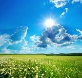 zielona łąkowa góra Obrazy Royalty Free