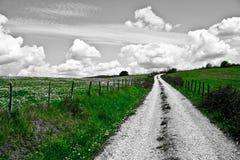zielona ścieżka Zdjęcia Stock