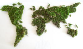 Zielona światowa mapa Obrazy Royalty Free