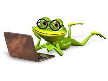 Zielona żaba Fotografia Stock
