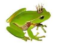 Zielona żaba w koronie Obraz Royalty Free