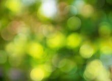 Zielona abstrakcjonistyczna tło plama Zdjęcia Stock