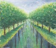 Zielona aleja drzewa, park Fotografia Royalty Free