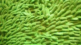 Zielona bawełna zdjęcie stock