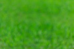 Zielona bokeh i plamy zielona trawa Zdjęcia Royalty Free