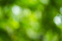Zielona bokeh i plamy zielona trawa Fotografia Stock
