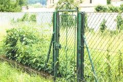 Zielona brama i natura fotografia royalty free