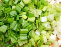 Zielona cebula zdjęcie royalty free