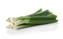 Zielona cebula odizolowywająca na bielu fotografia stock