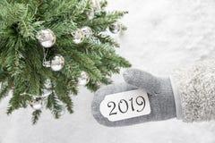 Zielona choinka, Szara rękawiczka, tekst 2019, Śnieżny tło fotografia royalty free