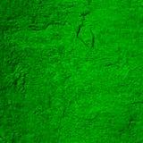 Zielona ścienna sztukateryjna tekstura Zdjęcia Stock
