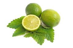 zielona cytryna Fotografia Stock