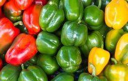 Zielona czerwień i żółty słodki pieprz Zdjęcia Royalty Free