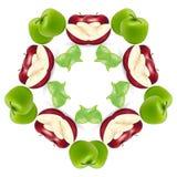 - zielona czerwone jabłko Fotografia Royalty Free