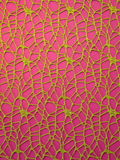 Zielona dekoracyjna sieć Obraz Royalty Free