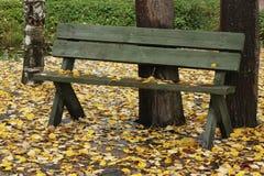 Zielona drewniana ławka na żółtych jesień liściach Obraz Royalty Free