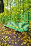 Zielona drewniana ławka z kolorem żółtym spadać opuszcza w lecie Garde Obrazy Stock